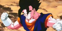The Wrath of Buu (A DBZ what-if)