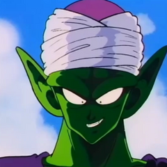 Piccolo during the final of the 23rd Tournament