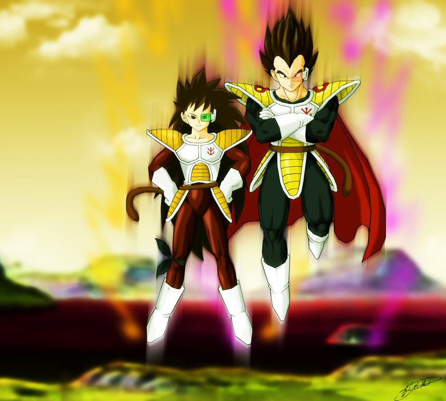 Goku vs broly fan animation - 1 8