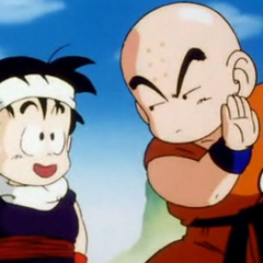 Krillin you know that were all gonna die right?