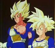 Goku and Gohan time chamber