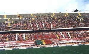 Diabos Vermelhos (Benfica)