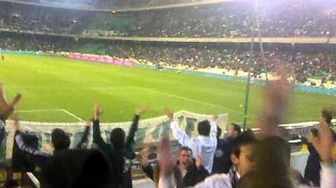 Yo tQ Real Betis!!