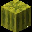 Melon block