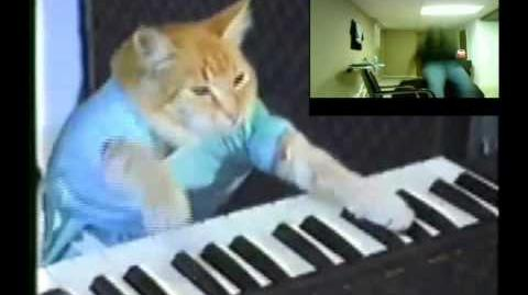 Keyboard Cat ZONE 【レッドゾーン】