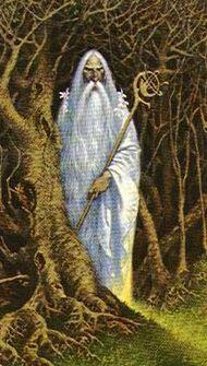Caerroil Wildwood