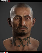 Gustavo head model