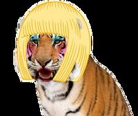 Grft beauty queen wig