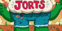 Jorts
