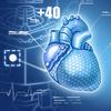 Technology synthetic organ