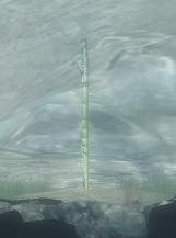 Longstick