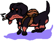Drug Puppy