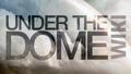 Thumbnail for version as of 23:56, September 7, 2013