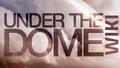 Thumbnail for version as of 17:20, September 10, 2013