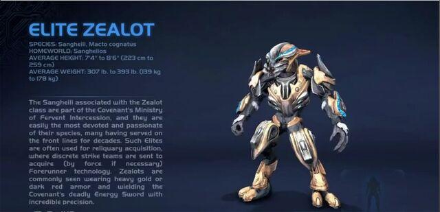 File:!Elite Zealot.jpg