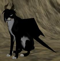 Dragon - Species