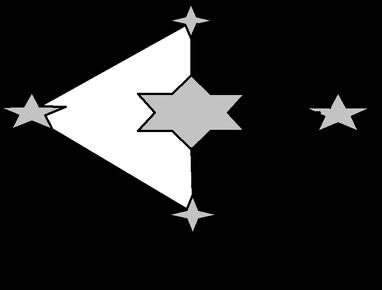 TFC Flag.