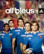 All bleus