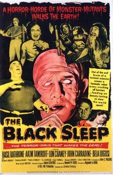 Blacksleepposter.jpg