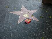 Eugene Pallette Walk of Fame