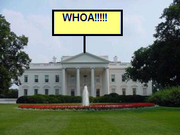Whoa! House
