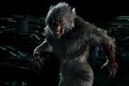 Turner01 Cursed-digitalWerewolf