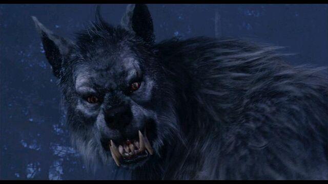File:The wolfman from van helsing1.jpg
