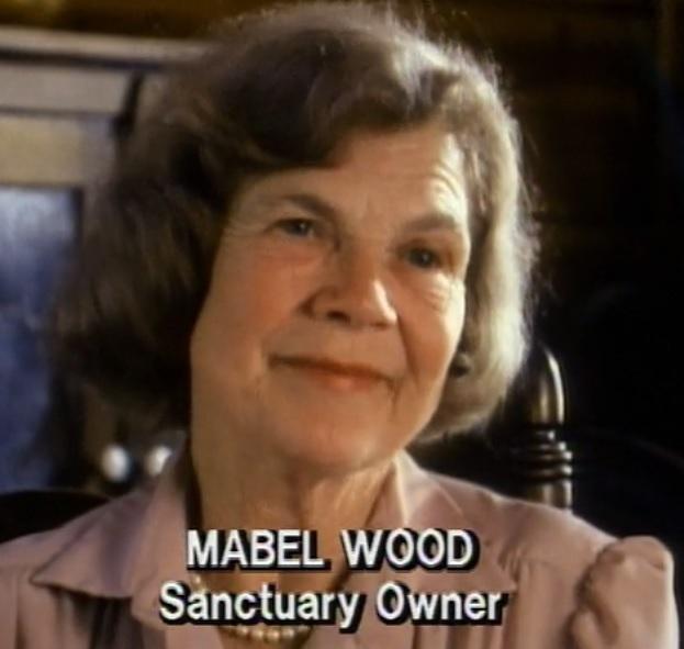 Mabel wood