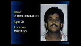Pedro pumajero