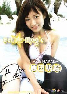Harada akie yellow magic
