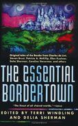 http://bordertownseries.com/series