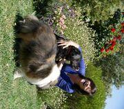 Keri & dogs