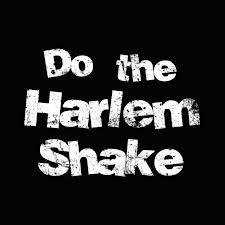 File:HarlemShake.jpg