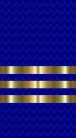Sleeve blue commander