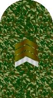 Sleeve camo gunnery sergeant