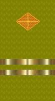 Sleeve gold paymaster lt