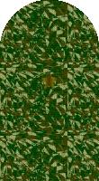 Sleeve camo brigadier general