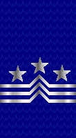 Sleeve blue master cpo