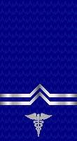 Sleeve blue corpsman 2