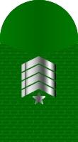Sleeve marine master gunnery sergeant
