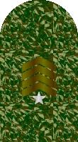 Sleeve camo sergeant major