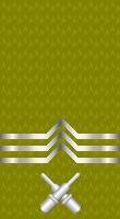 Sleeve gold gunners mate 1
