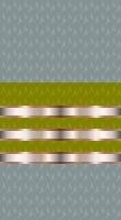 Sleeve cadet gold 2
