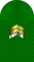 Sleeve marine sergeant