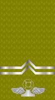 Sleeve gold deckman 2