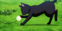 Aijima Cecil/Anime