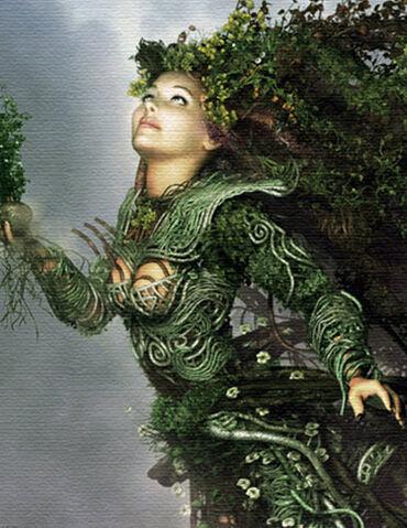 File:Miriade, the Evergreen.jpg