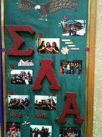 Sigma Lambda Alpha Board