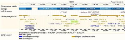 EnsEMBL Web Component Location ViewTop-Homo sapiens-Location-View-68-10