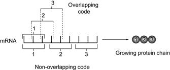 Overlap code